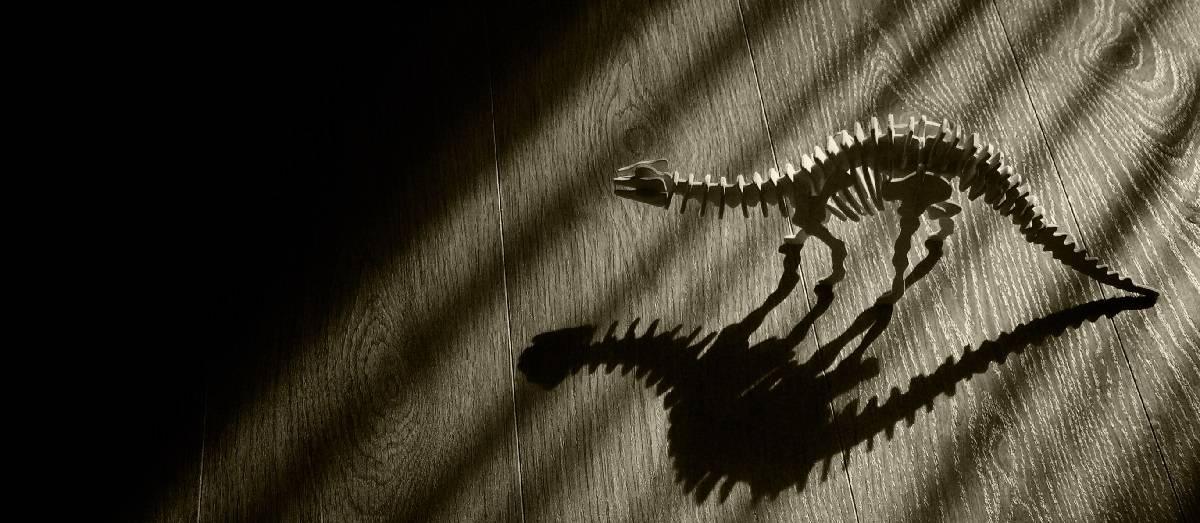 Scary Dinosaur Skeleton long shadows in dark room