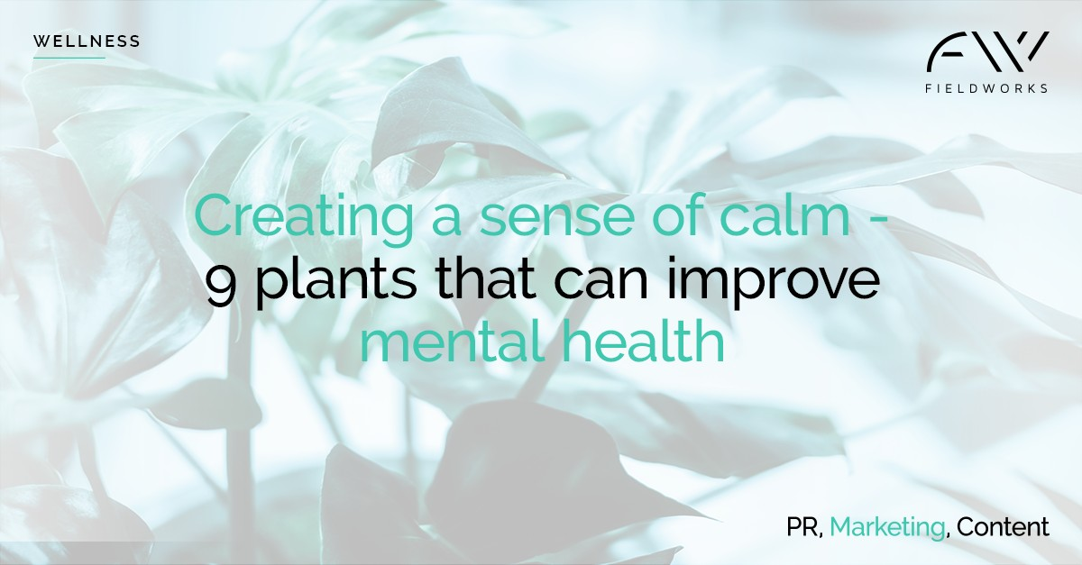 190731_wellness social card_9 plants for mental health